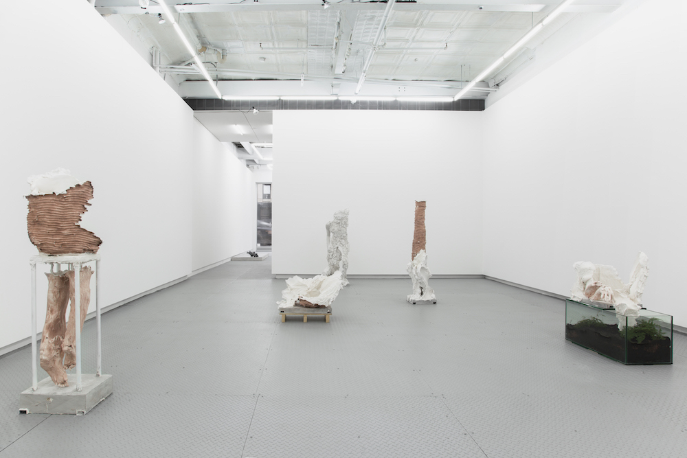 UNTIL DIFFERENT, 2018, Exhibition View