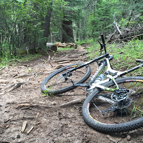 Rim_Trail_Cloudcroft_Singletrack_NewMexico