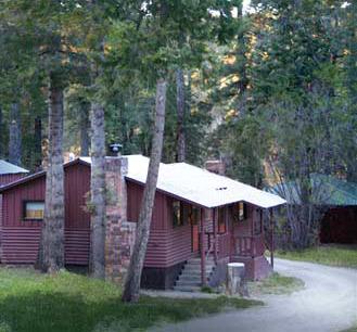 cabin-tall-treescrop.jpg