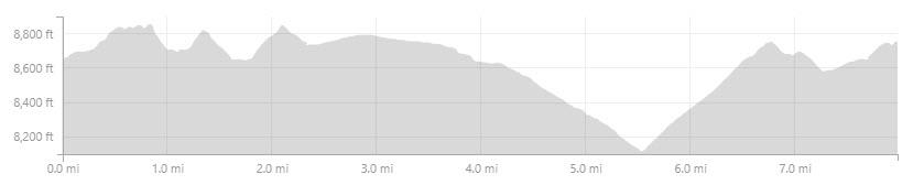 Shortloop-Profile.jpg