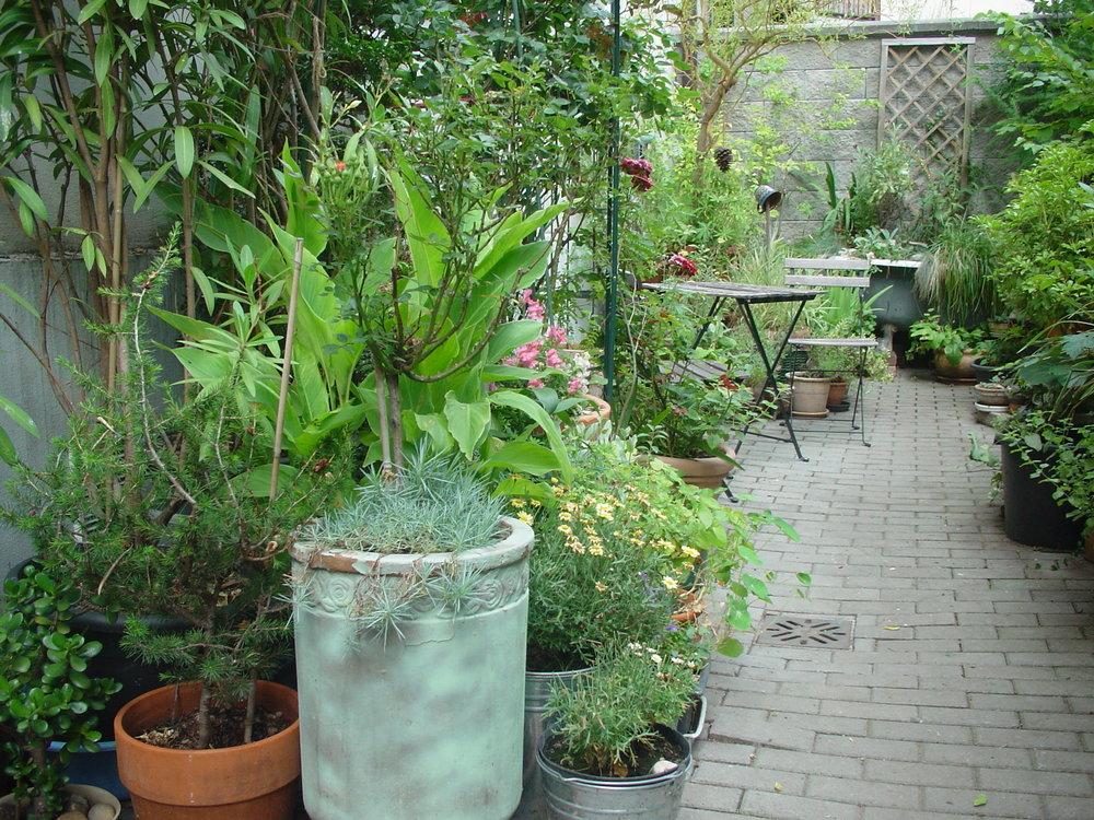 """Tusarova: 40 m2 radosti - Kdo říká, že jeho dvůr je příliš malý, měl by se podívat do Tusarovy. Najde zde zahradu v nádobách na čtyřiceti metrech čtverečných bez nutnosti kopat do země. První rostliny zasadila Dana Vodáková v roce 2013. Citlivě kombinovala malé a velké květináče, keramické amfory či starou litinovou vanu odnaproti. Občas nějakou květinu přinesli sousedi. Během pár let se zahrada rozšířila se po celém obvodu. Zelený svět pod okny prospívá i ostatním """"Když je vedro, jinde paří, ale tady je svěží klima""""."""