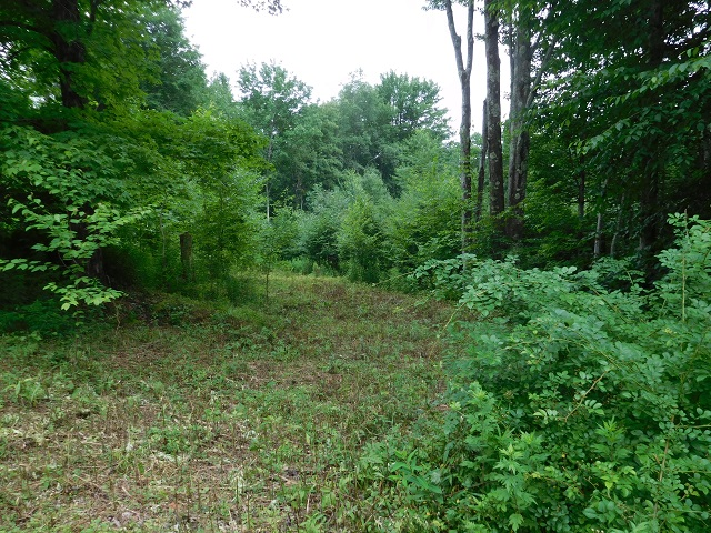 25,000 - Acreage +/-: 5.034In Subdivision With Lake Rights1.4 Miles to Pepacton Reservoir