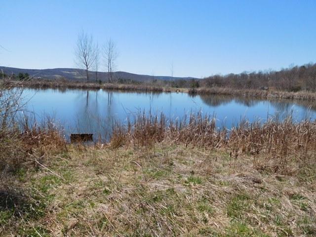 40,000 - Acreage +/-: 10.01With Pond & Views