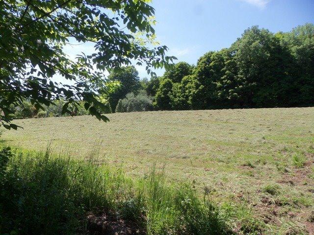69,900 - Acreage +/-: 25.946Located On Lightly Traveled Road