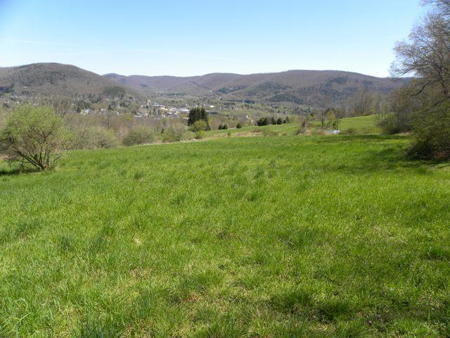 99,900 - Acreage +/-: 40.54Surveyed, Beautiful View, Spring