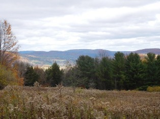 209,000 - Acreage +/-: 71.79Beautiful ViewsPotential For Future Gas Exploration & Royalties