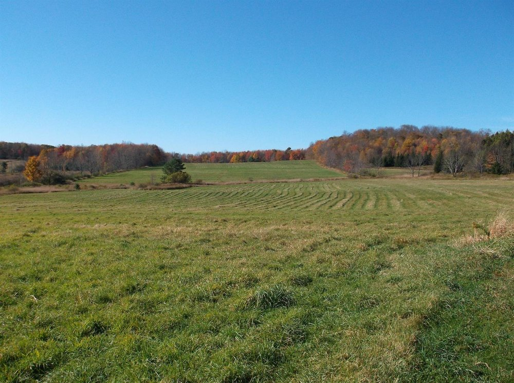 79,900 - Beautiful 29+ Acre Parcel With Views & Road Frontage