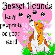 1f473659e36b2d413eede41760ce5877--sad-eyes-bassett-hound.jpg