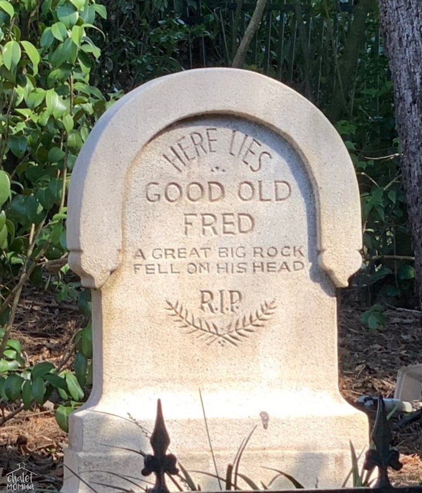 This was at the haunted mansion - we all laughed and thought of our late cat fred.