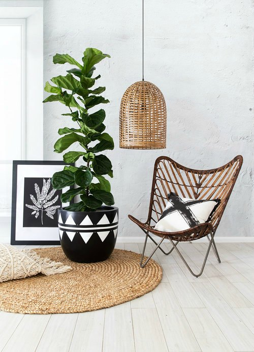 Arc & Family     www.arcandfamily.com.au    Brisbane's  Arc + Family  create bold designer pots that are the perfect addition to any home.