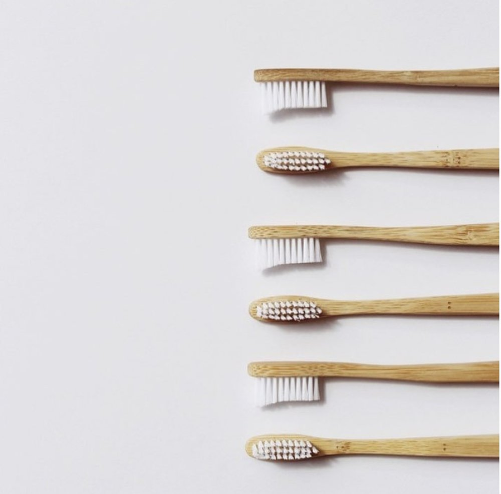got wood toothbrushes.jpg
