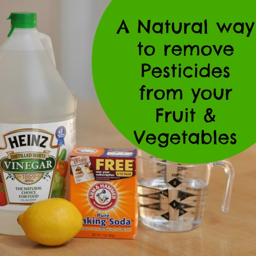 NaturalPesticideRemover