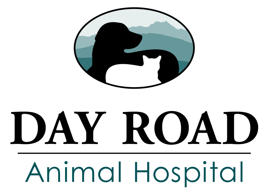 Day Road Animal Hospital