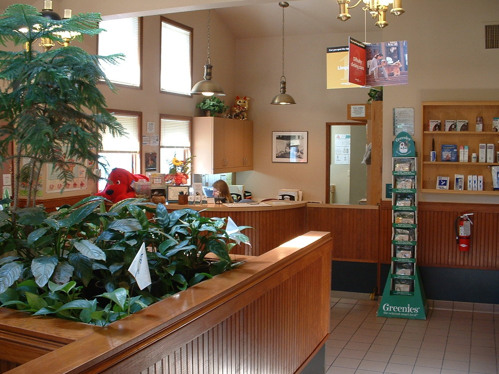 Day Road Animal Hospital front lobby and front desk