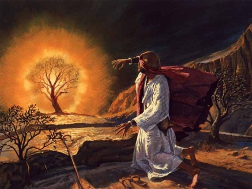Moses and the Buring Bush3.jpg