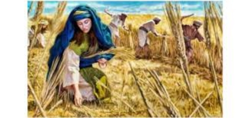 Ruth gleaning in the fields.jpg