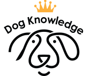 Get Dog Knowledge Certified