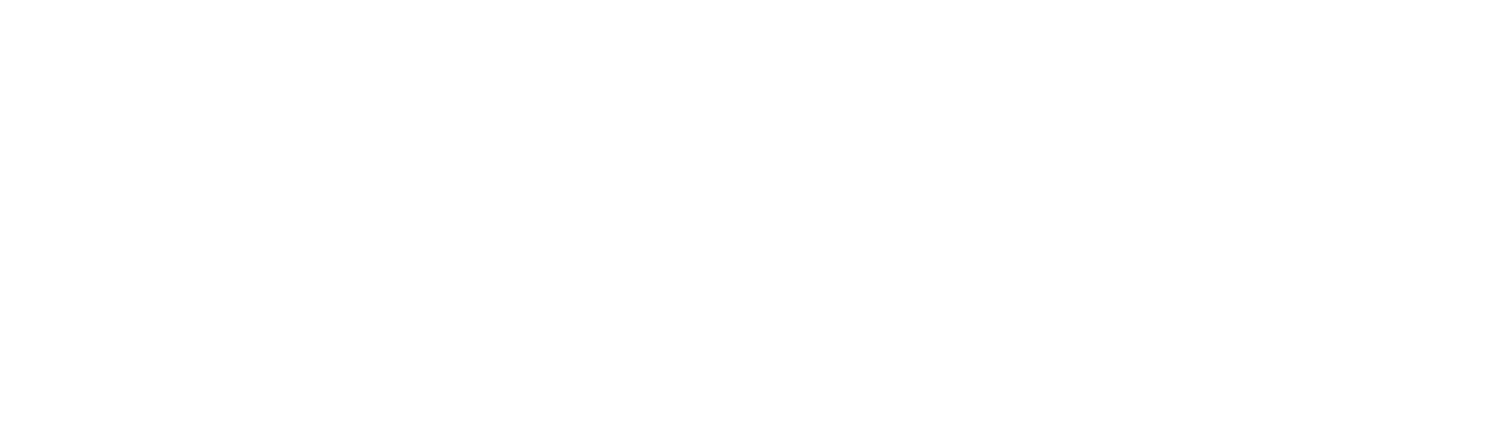 Young Professionals in Government