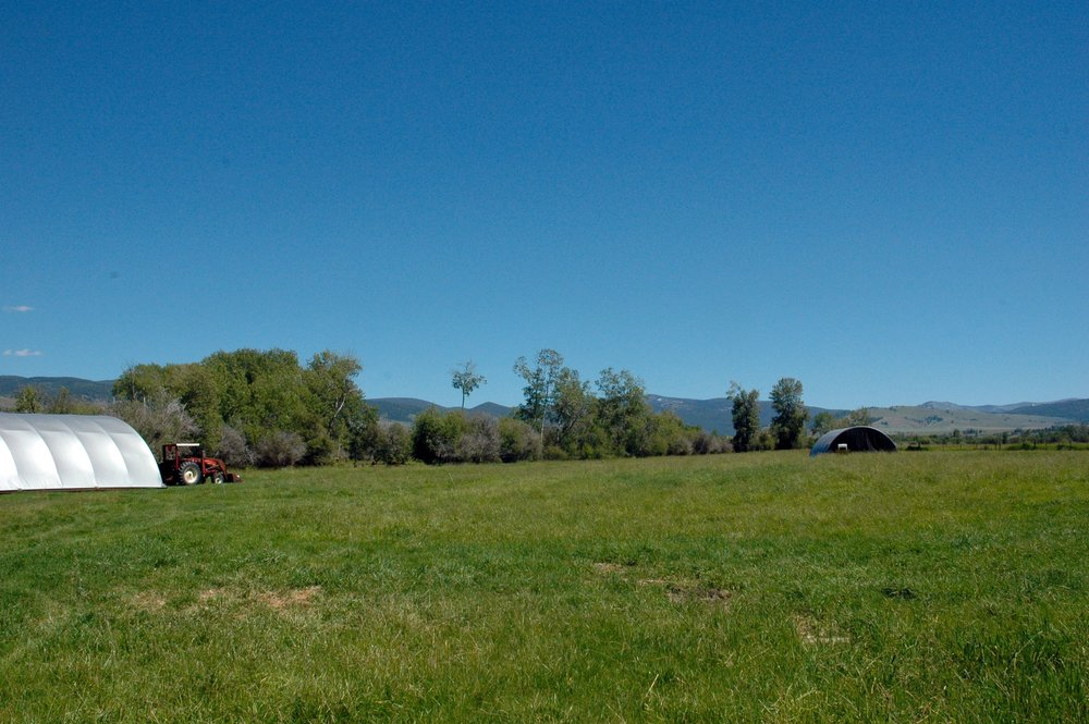Living River Farms pasture with portable chicken housing for protection