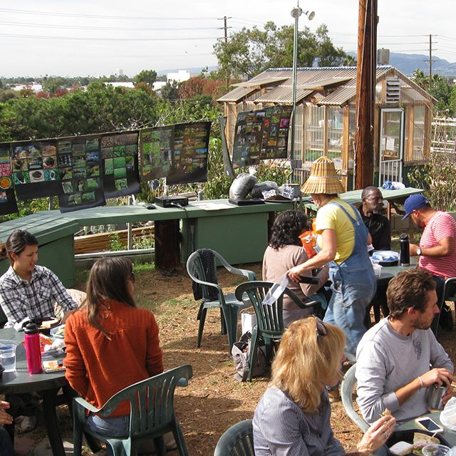 We're getting excited for our @oceanviewfarms tour + lunch & agua fresca from @todoverde this Saturday! Get tix ASAP (see bio) to find out why this #communitygarden is so hot there's a 2 year waiting list. #sustainablefood