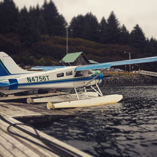 #tbthursday to this summer and this beauty. 😍 ✈️ The deHavilland Beaver, a classic in it's own right.