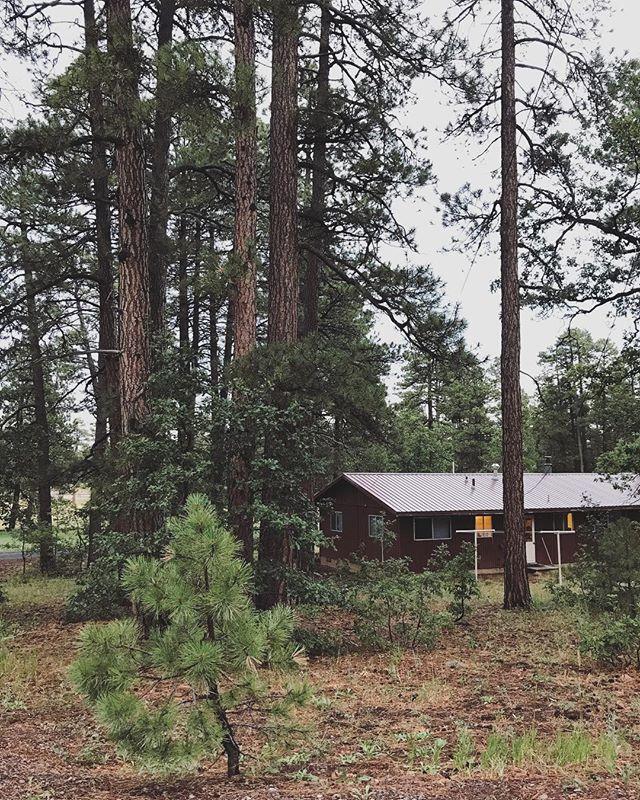 Mi casa 🌲 . . . #arizona #home #summerfun #summertime #cabinlife #fire #fireseason #wildlandfirefighter #happyjack #explore #travel #nomad #wanderer #pine #forest