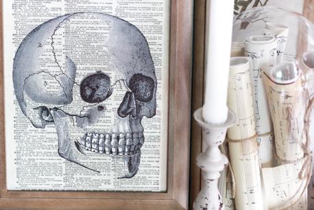 Halloween Skull Free Printable.png