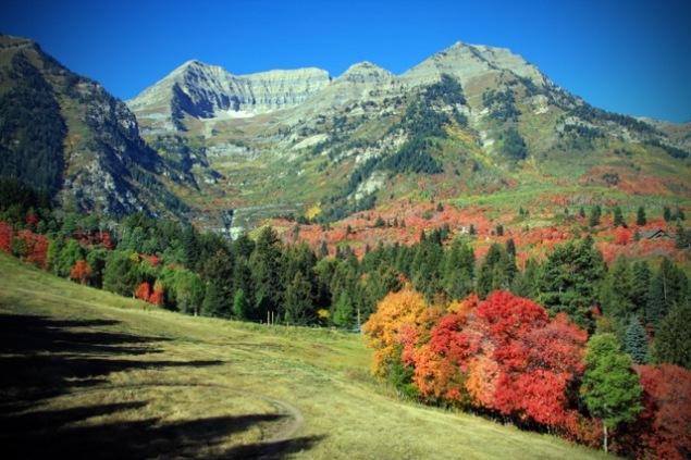 Utah_-_Mount_Timpanaogas_-_Sundance_-_Fall-635x423.jpeg