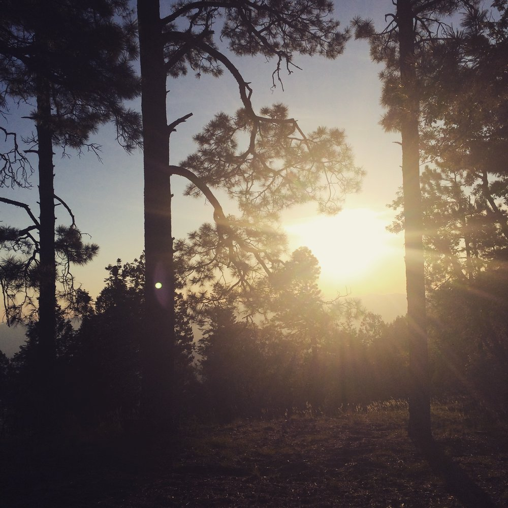 Sunrise Mt. Lemmon