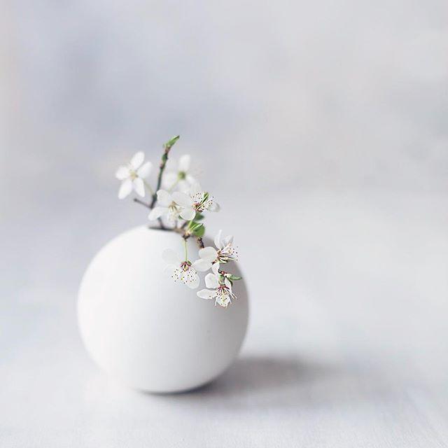 one-bud-vase.jpg