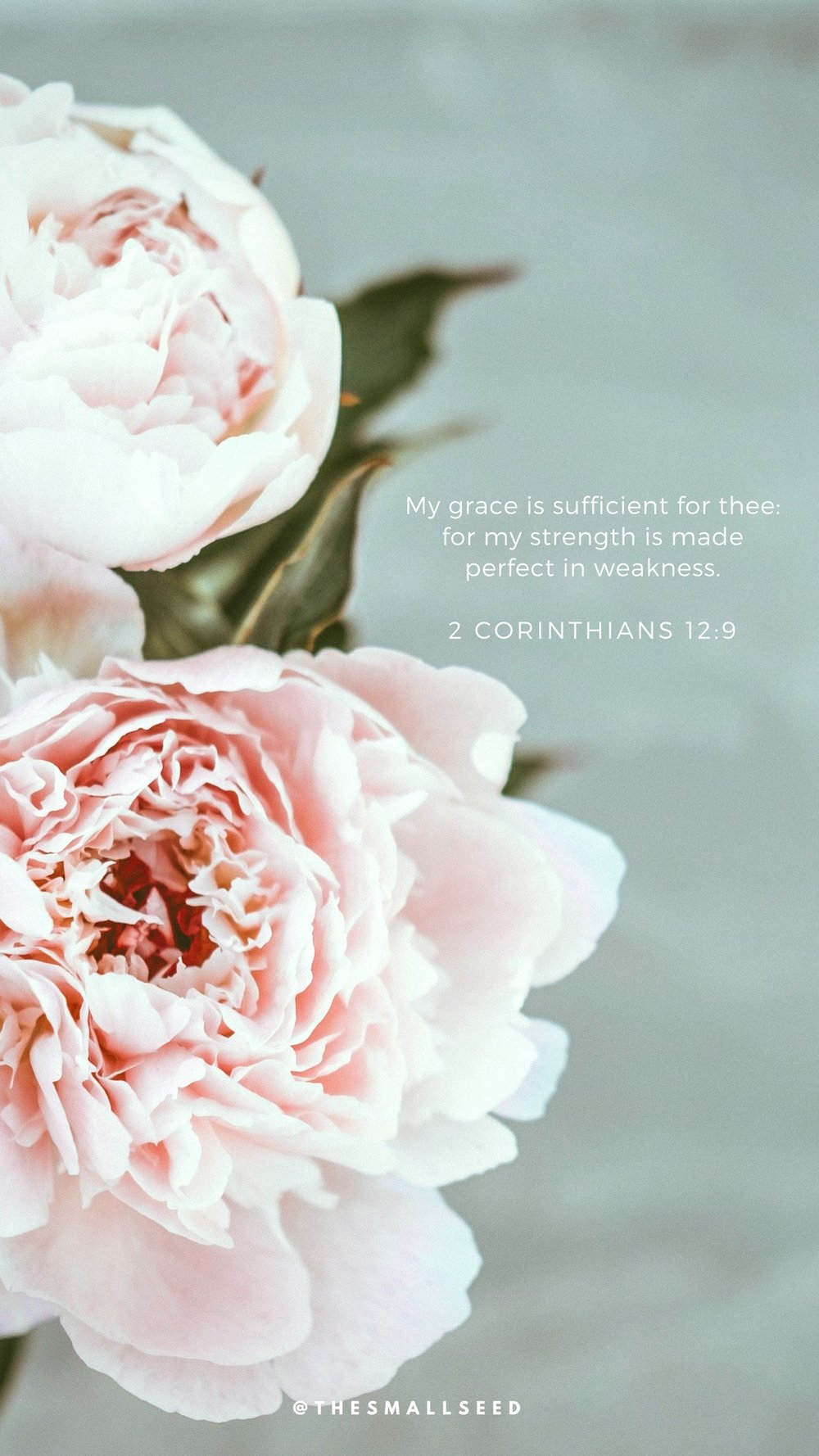 My Grace Is Sufficient*
