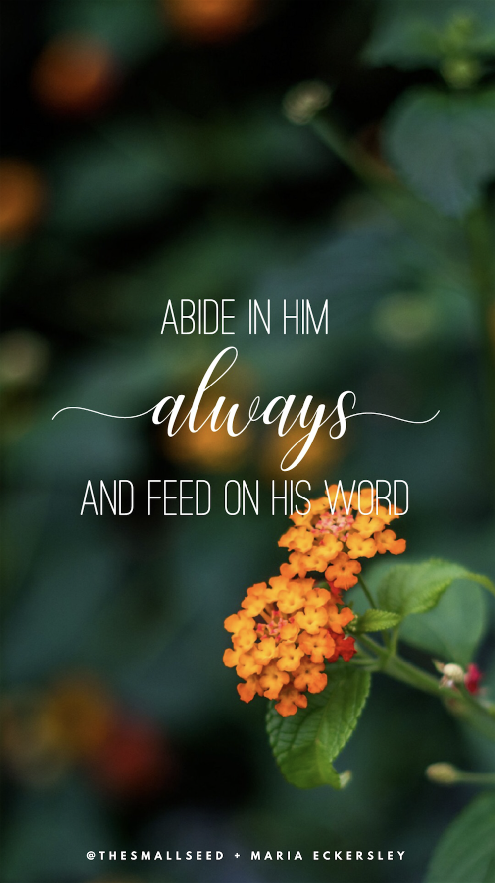 Abide In Him Always*