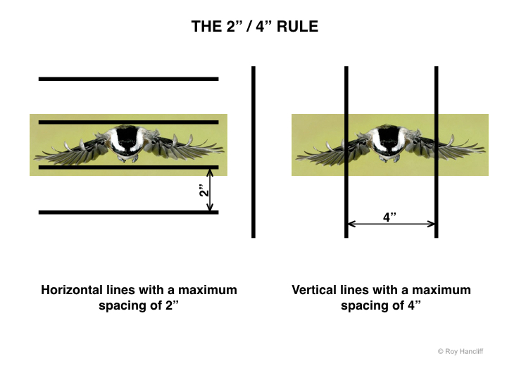 - I was approached by the Institute of American Architects and Construction Canada regarding the use of this image which I donated. They felt that my image of a Chickadee perfectly illustrated the 2 x 4 Rule. The idea is to incorporate into high rise building practices vertical and horizontal lines visible to the birds which will curtail the enormous losses to the bird population due to collision.
