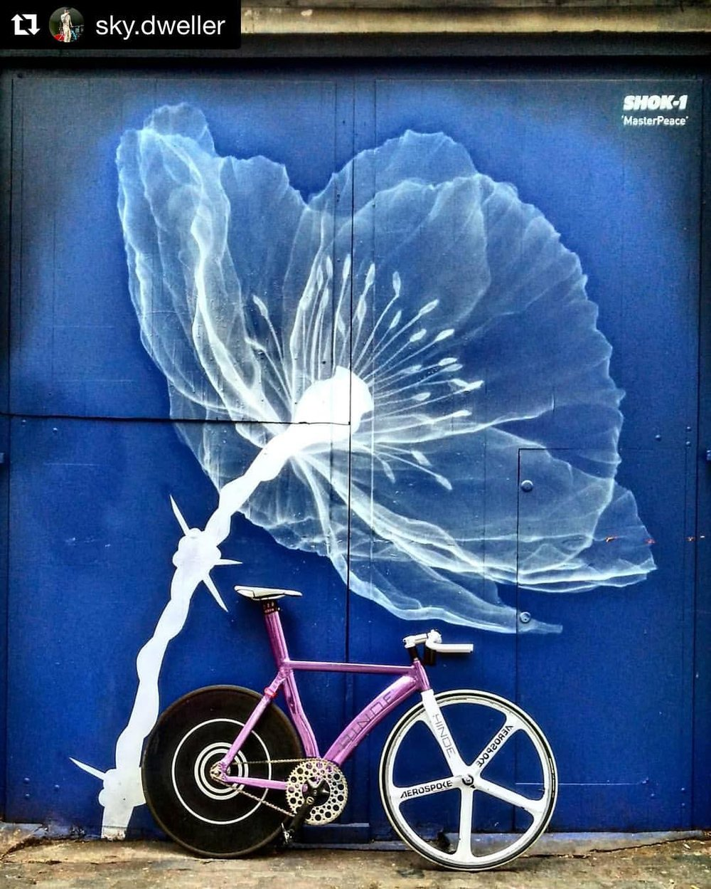 #Repost @sky.dweller 👊😎 ・・・ Be A Flower Not A Weed - Aaron Neville 🌷 - Art By @shok_1 ️ Chainring by @bespokechainrings ⚙#bespokechainrings #deluna #track #chainring #60t #bikeporn #bike #mural #london #fixedgear #trackbike