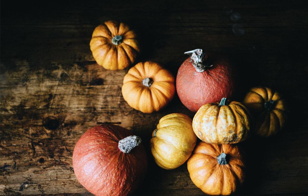 baby-pumpkins.jpg