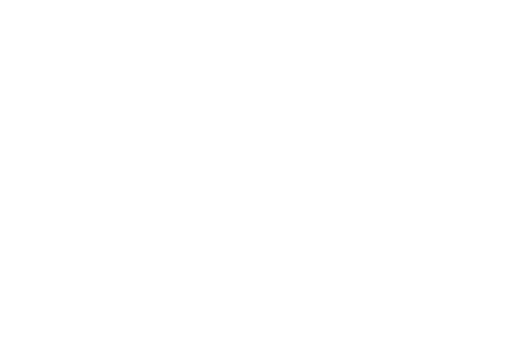 OFFICIAL SELECTION - SHORT to the Point - 2018.png