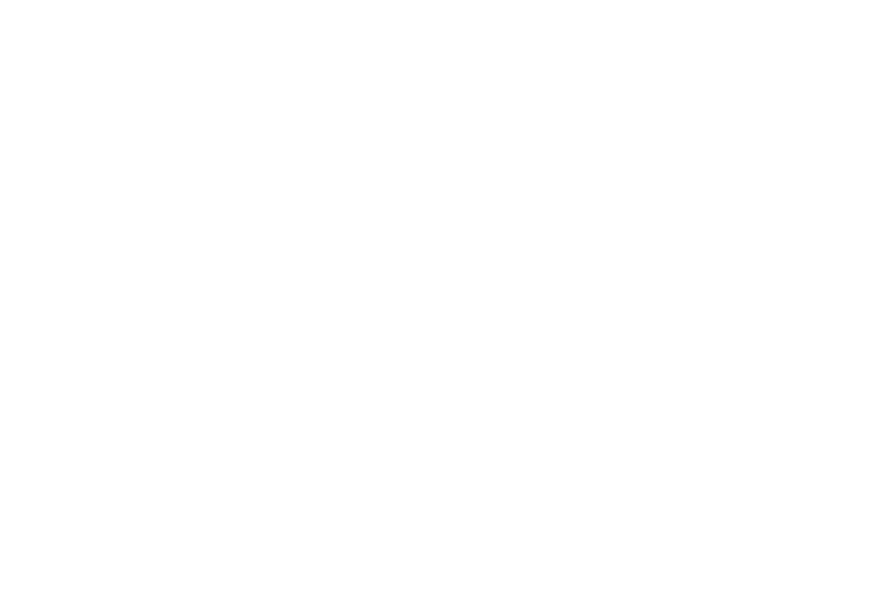 OFFICIAL SELECTION - Cryptshow Festival - 2018 (1).png