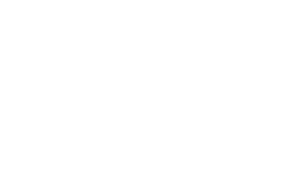OFFICIAL SELECTION - Discover Film Awards - 2018 (1).png