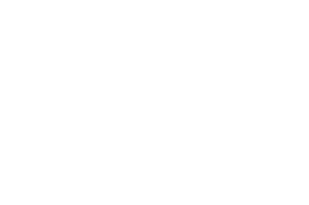 OFFICIAL SELECTION - London Short Film Festival - 2019 (1).png