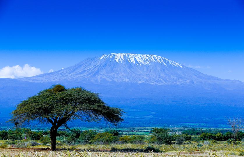 Kilimanjaro.png