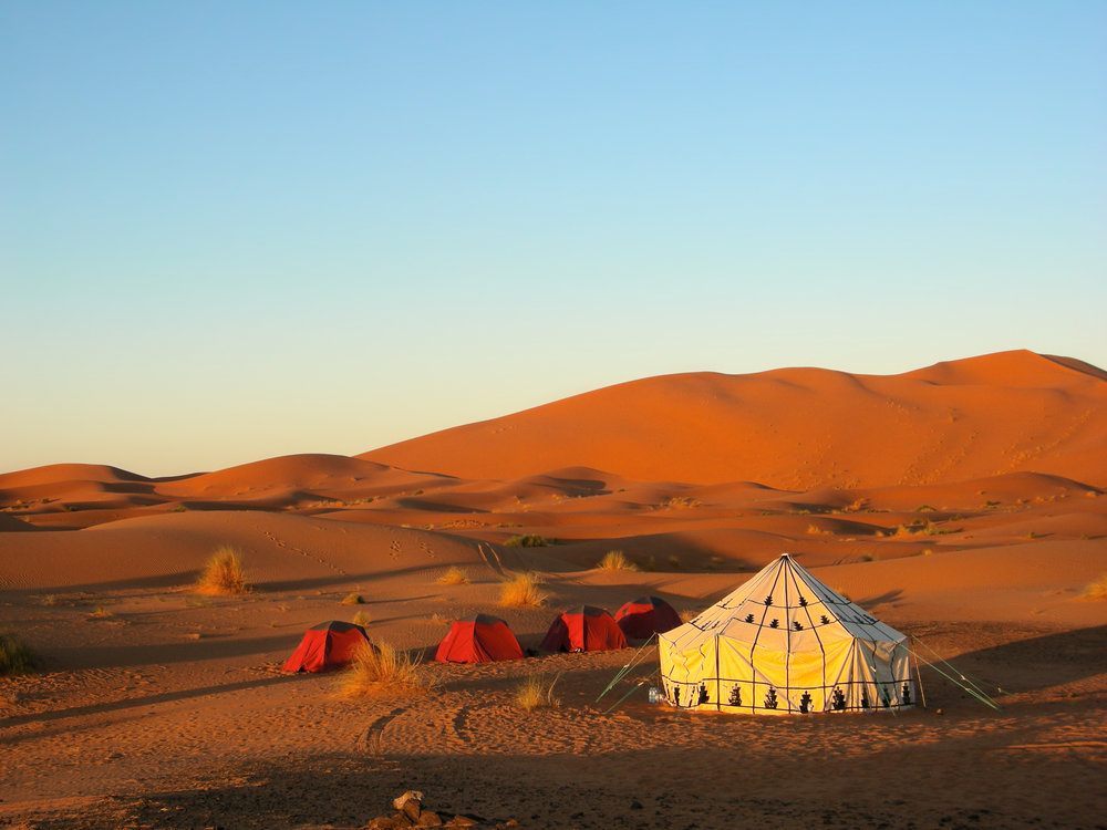 Journey across the sahara desert - Your extension begins with a trek on camel-back across the Erg Chebbi sand dunes - the highest and most spectacular in Morocco.Your destination is a beautiful berber camp, where you will then spend the night sleeping under the stars.Trip Duration: 4 nights/ 5 daysReg. Fee: £95Balance Payment: £245