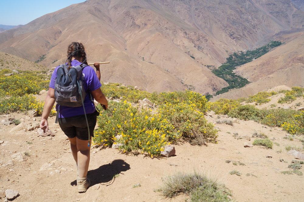 Trekker in Atlas Mountains