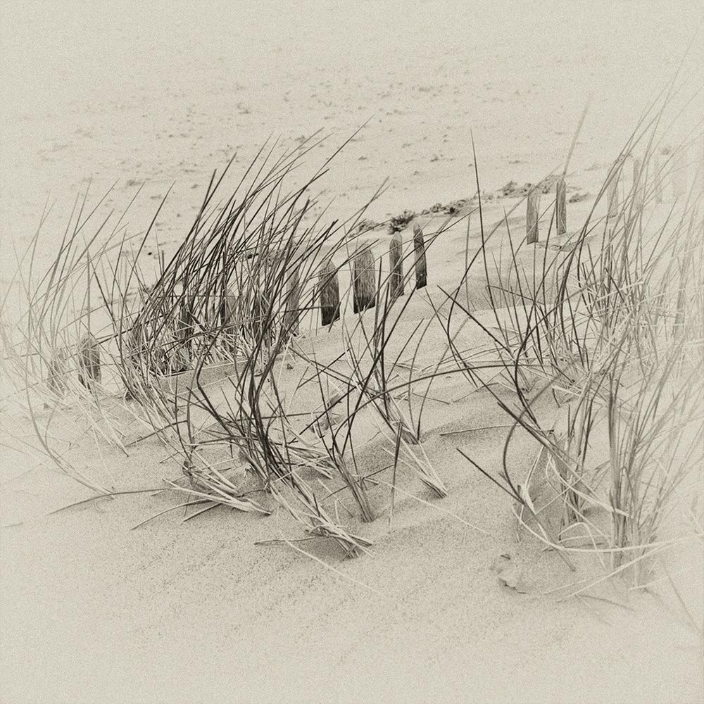 4_Sand_Dunes.jpg
