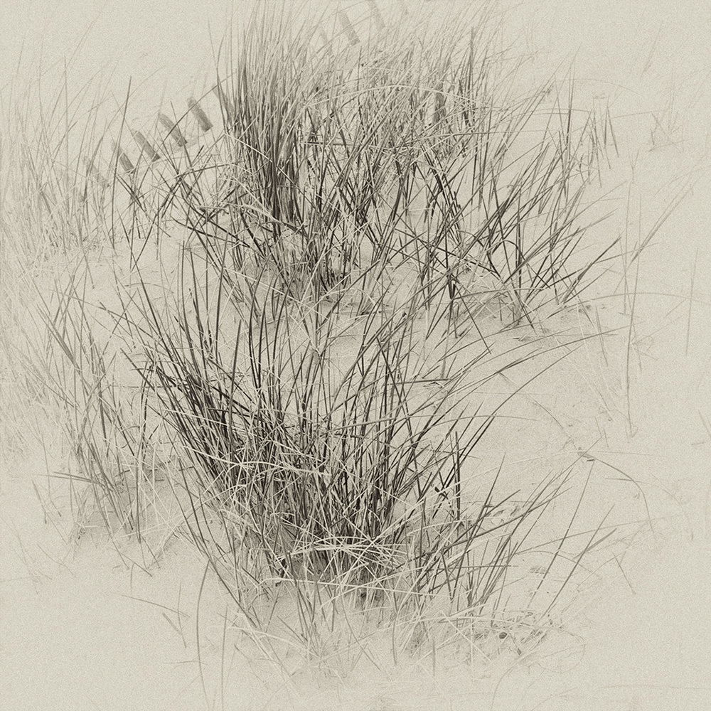 2_Sand_Dunes.jpg
