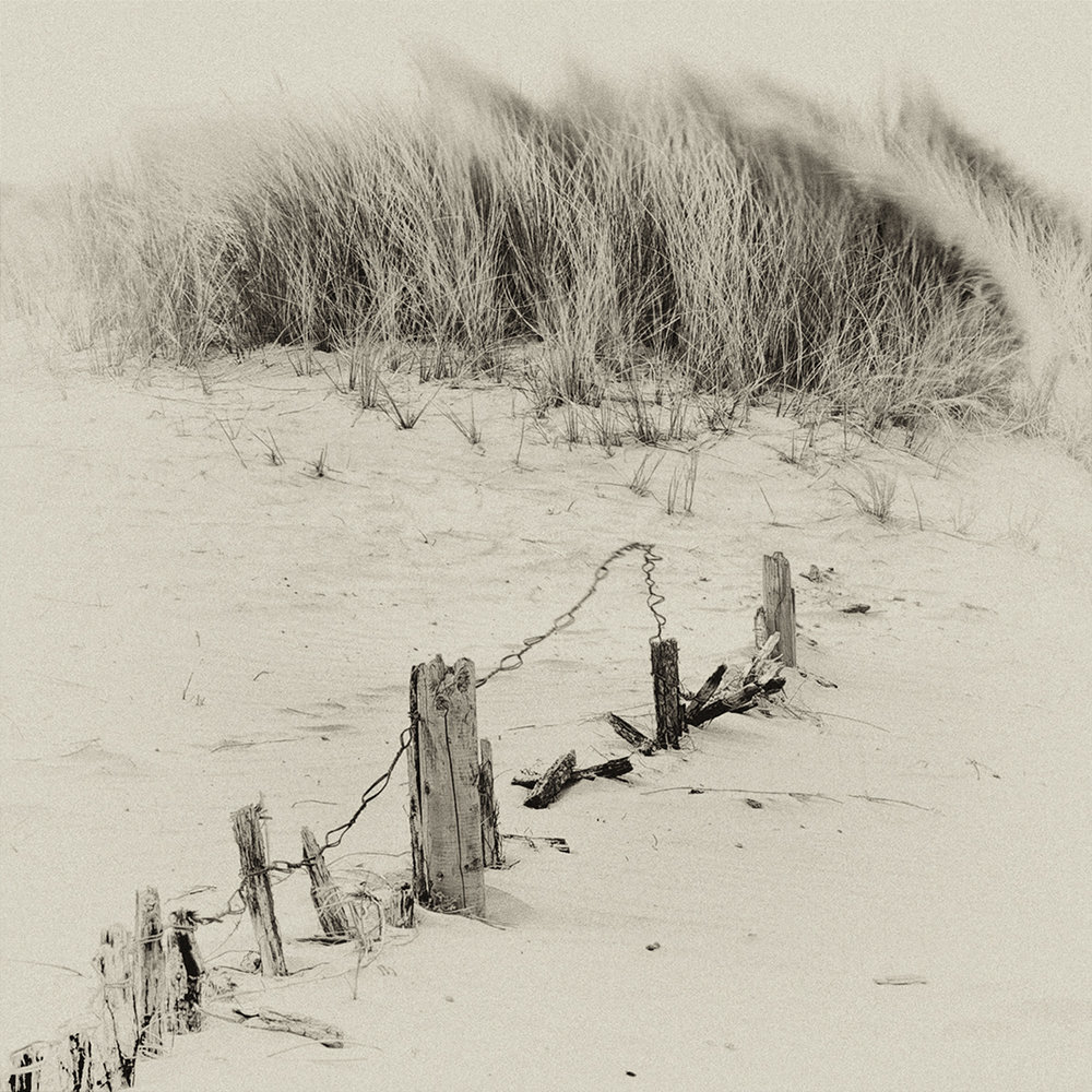 1_Sand Dunes.jpg