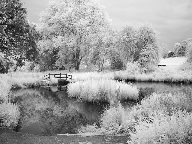 Harpenden Pond (c) Ted French, undated. This infrared print was made around the corner from the artist's home.