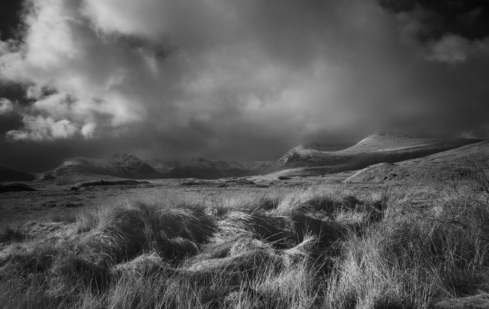 Light on the Moor.jpg
