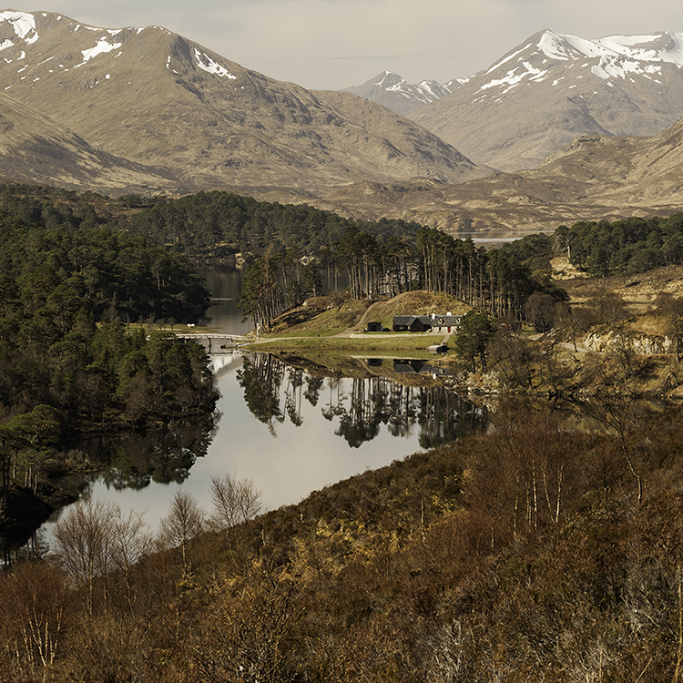 21Glen Affric and beyondSmallSquare.jpg