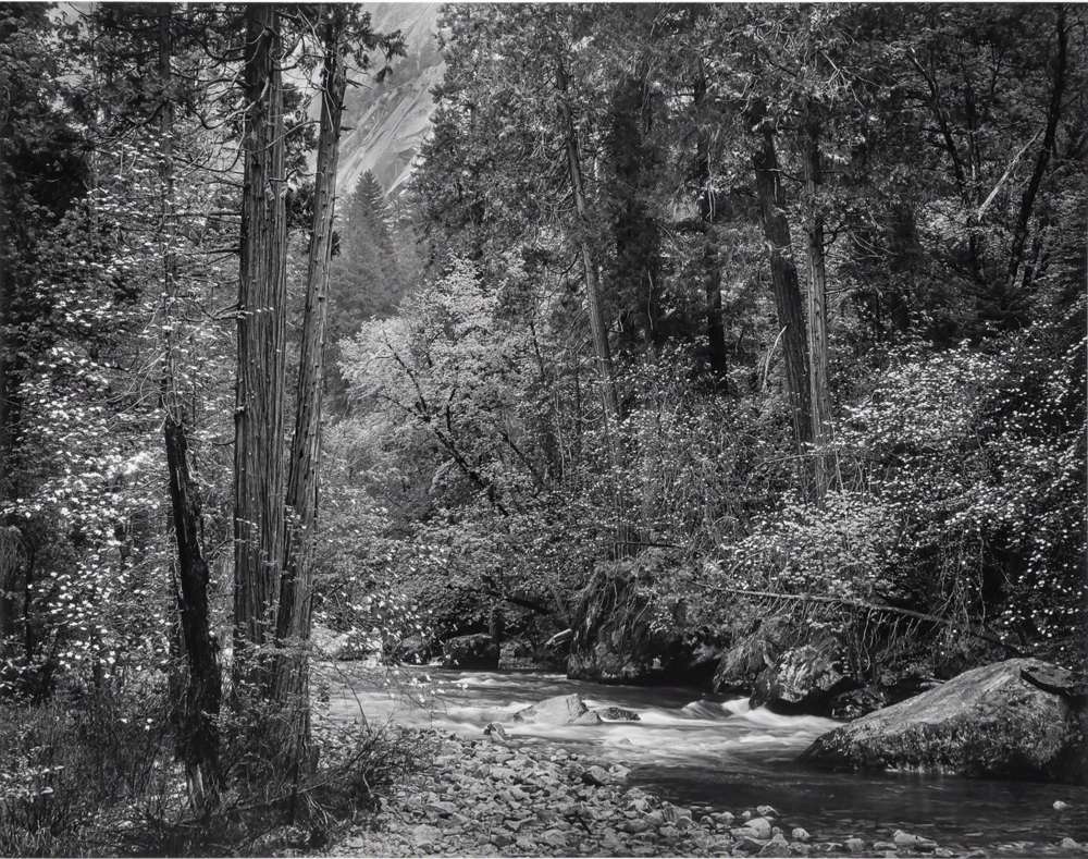 Adams Tenaya Creek.png