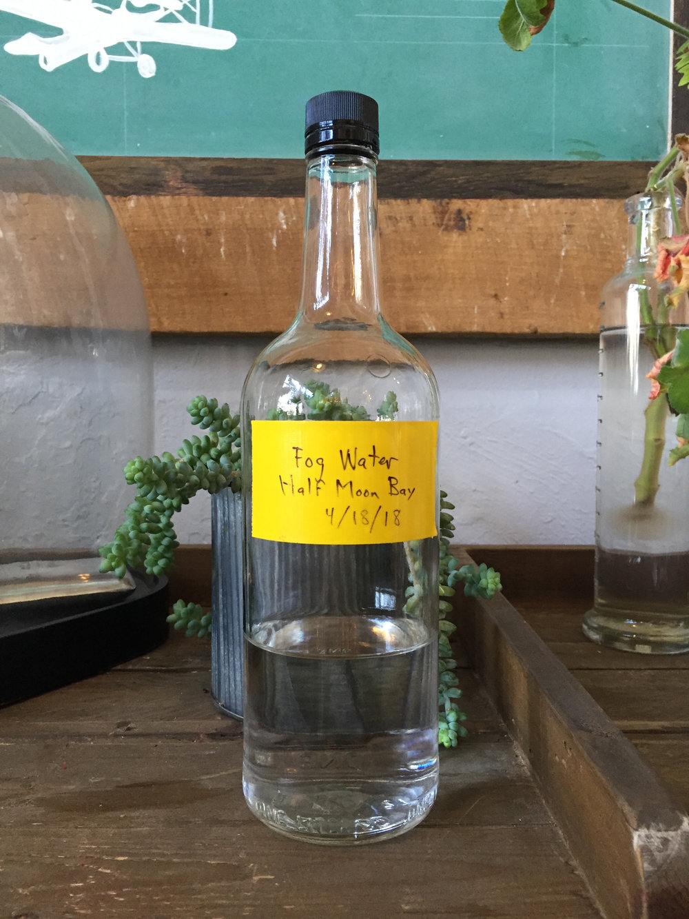 Water collected from northern California Fog used in Fog Point Vodka